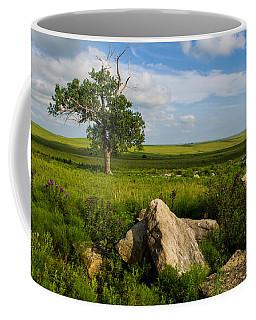 Rocks And Cottonwood 1 Coffee Mug