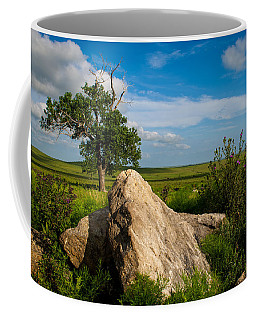 Rocks And Cottonwood 2 Coffee Mug