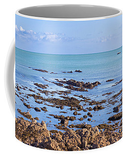 Coffee Mug featuring the photograph Rocks And Seaweed And Seagulls In The Irish Sea At Howth by Semmick Photo