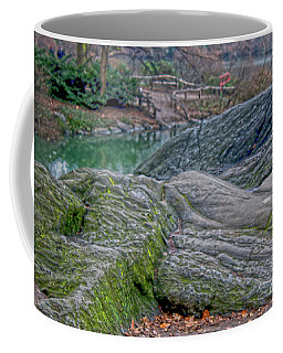Coffee Mug featuring the photograph Rocks At Central Park by Sandy Moulder
