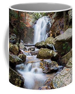 Coffee Mug featuring the photograph Rocky Beauty by Parker Cunningham