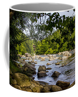 Rocky Broad River Coffee Mug