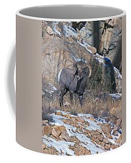 Rocky Mountain Big Horn Ram  Coffee Mug