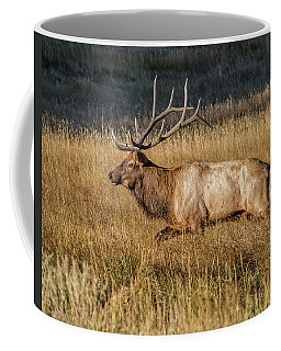 Rocky Mountain Bull Elk Coffee Mug