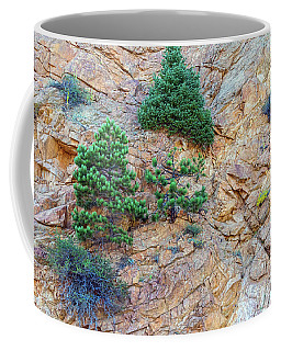 Coffee Mug featuring the photograph Rocky Mountain Canyon Wall  Trees And Color by James BO Insogna