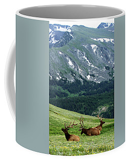 Coffee Mug featuring the photograph Rocky Mountain Elk 5 by Marie Leslie