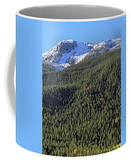 Coffee Mug featuring the photograph Rocky Mountain Evergreen Landscape by Dan Sproul