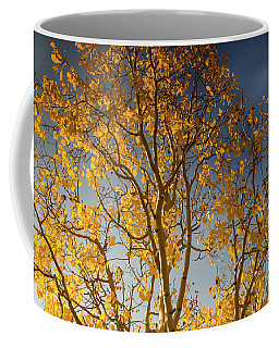 Rocky Mountain Fall Colors Coffee Mug