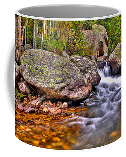 Rocky Mountain Stream Coffee Mug by Scott Mahon