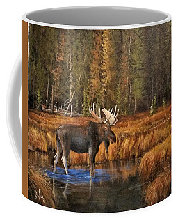Rocky Mountain Wading Pool Coffee Mug