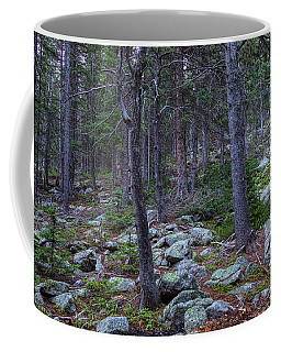 Coffee Mug featuring the photograph Rocky Nature Landscape by James BO Insogna