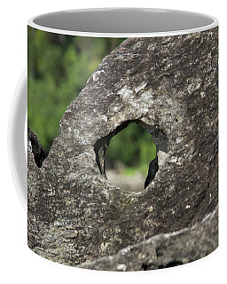 Rocky View Point Coffee Mug