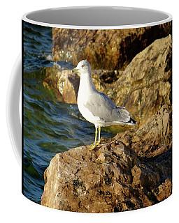 Rocky Waters Coffee Mug
