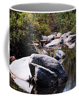 Rocky World Coffee Mug by Donna Blackhall