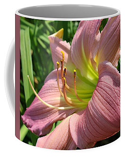 Coffee Mug featuring the photograph Romance In The Afternoon by Bruce Bley