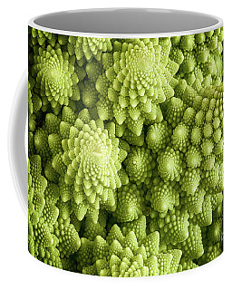 Romanesco Broccoli Vegetable Close Up Coffee Mug