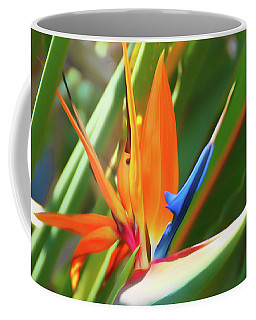 Coffee Mug featuring the photograph Romantic Skies Bird Of Paradise by Aimee L Maher Photography and Art Visit ALMGallerydotcom