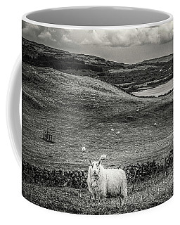 Room To Roam Coffee Mug