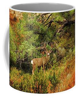 Roosevelt Deer Coffee Mug