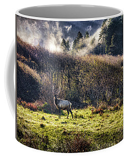 Coffee Mug featuring the photograph Roosevelt Elk by Leland D Howard