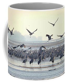 Roosting On The Platte Coffee Mug