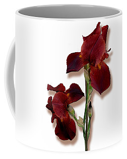 Root Beer Irises Coffee Mug by Tara Hutton