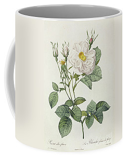 Rosa Alba Foliacea Coffee Mug