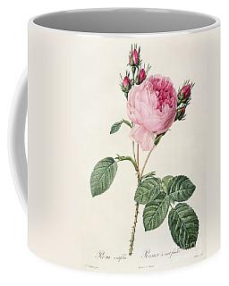 Rosa Centifolia Coffee Mug