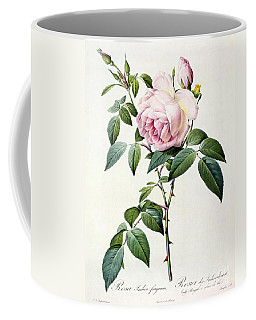 Rosa Indica Fragrans Coffee Mug