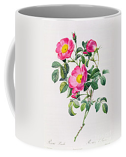 Rosa Lumila Coffee Mug