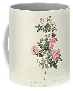 Rosa Multiflora Carnea Coffee Mug