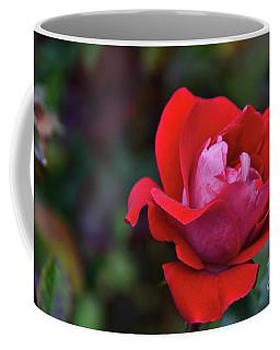 Rosa Roja Para Ti Coffee Mug by Diana Mary Sharpton