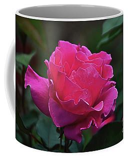 Rosa Scuro Coffee Mug by Diana Mary Sharpton