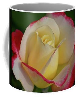Rose 3913 Coffee Mug