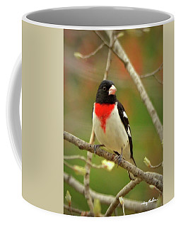 Rose-breasted Grosbeak Coffee Mug