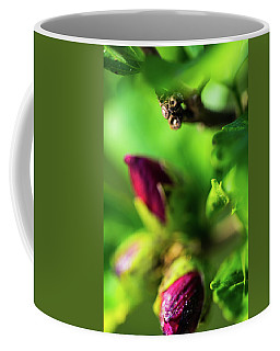 Rose Buds Body Guard Coffee Mug