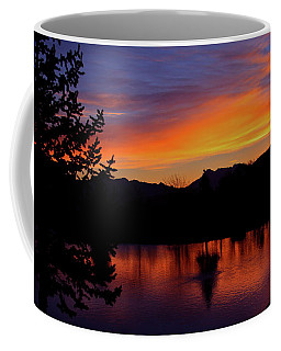 Rose Canyon Morning Coffee Mug