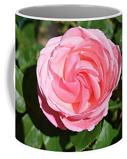Coffee Mug featuring the photograph Rose Flower by Margarethe Binkley