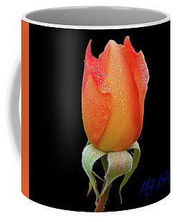 Coffee Mug featuring the photograph Rose-marie by Mark Blauhoefer