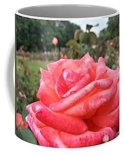 Rose Of Sharon - Faith Coffee Mug