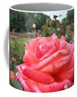 Coffee Mug featuring the photograph Rose Of Sharon - Faith by Robert Knight