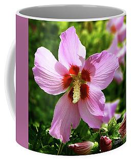 Rose Of Sharon Flowers Coffee Mug