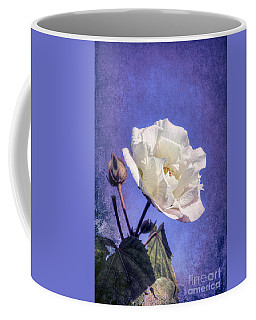 Coffee Mug featuring the photograph Rose Of Sharon In Blue Fog by Elaine Teague