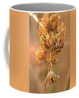 Rose Of Sharon In Winter Coffee Mug
