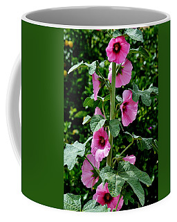 Rose Of Sharon Vine Coffee Mug