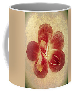 Coffee Mug featuring the photograph Rose Petals by Linda Sannuti