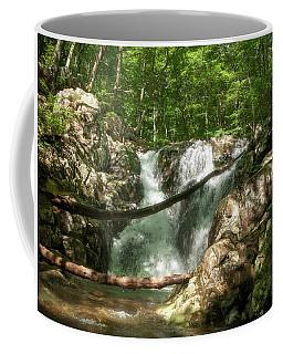 Rose River Falls 2 Coffee Mug