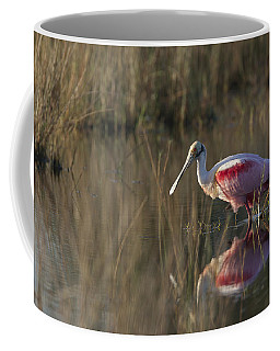 Roseate Spoonbill In Morning Light Coffee Mug