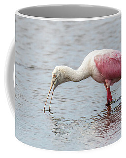 Coffee Mug featuring the photograph Roseate Spoonbill by Paul Freidlund