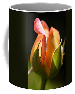 Rosebud Coffee Mug by Ralph A  Ledergerber-Photography